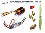 Set Brushless Mentor EFM